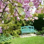 Gardens at Dining room in Redhouse Farm Bed & Breakfast near Lincoln