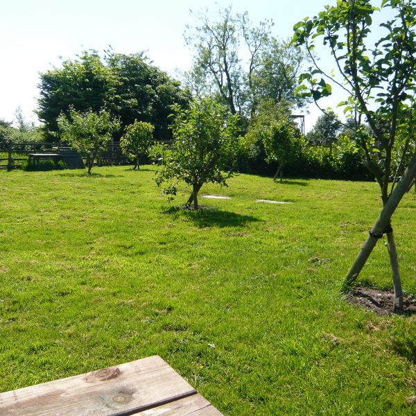 Picnic orchard at Dining room in Redhouse Farm Bed & Breakfast near Lincoln