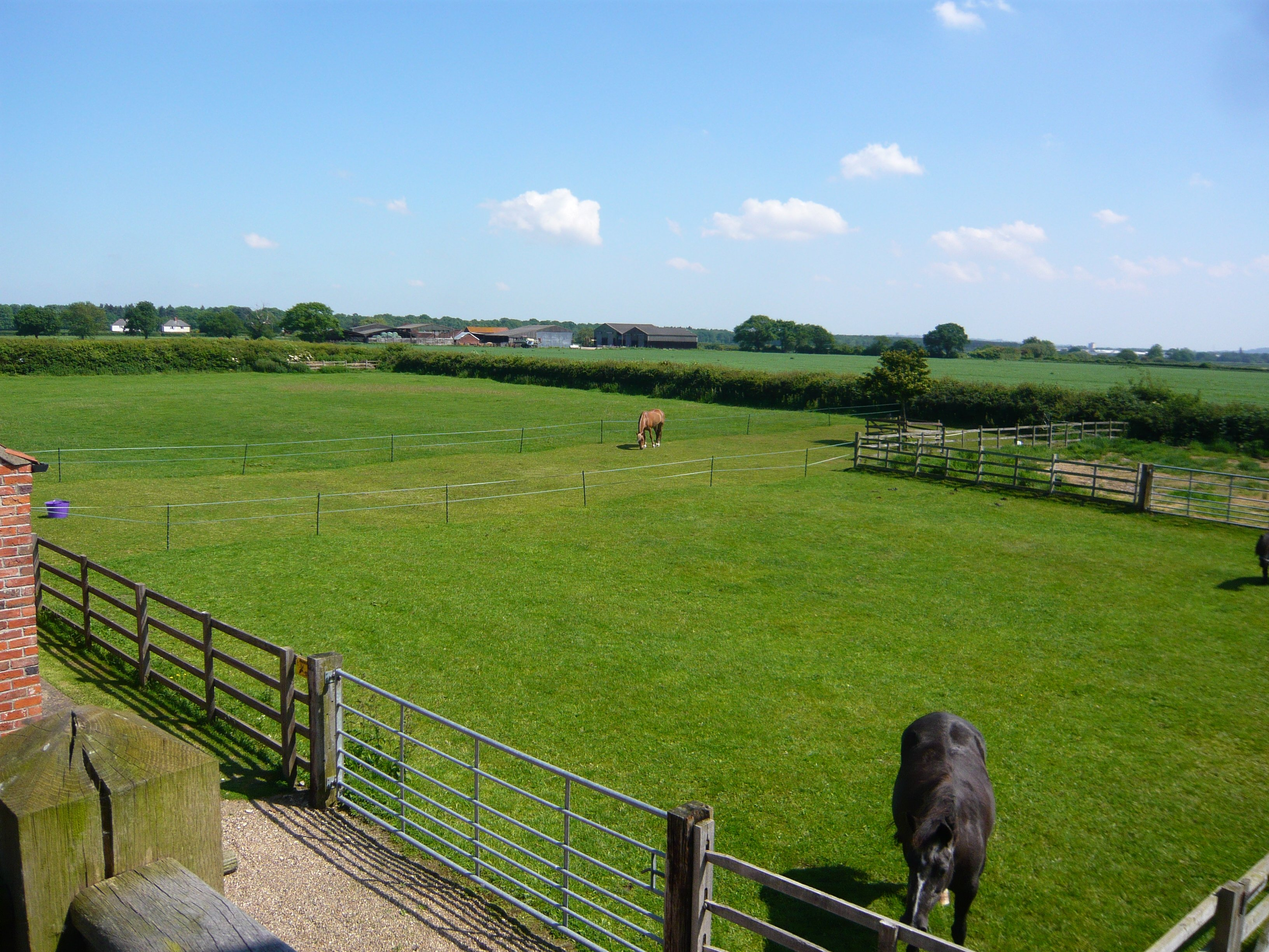 View from Oakloft self catering apartment in Lincolnshire