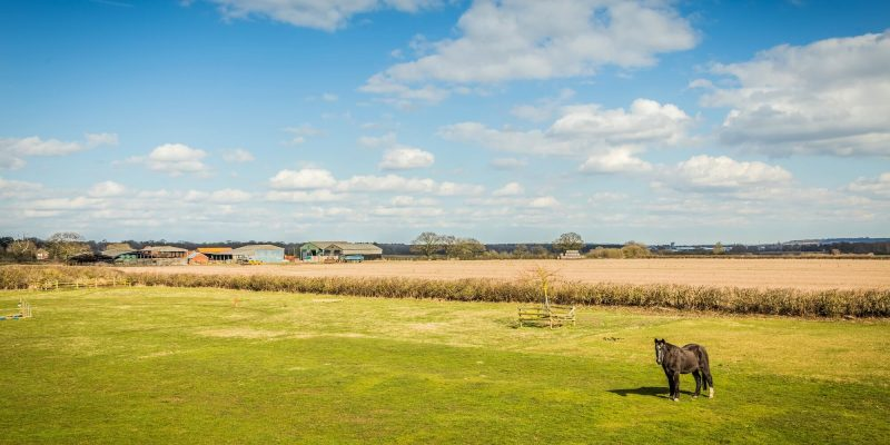 The view from Oakloft self catering apartment in Lincolnshire